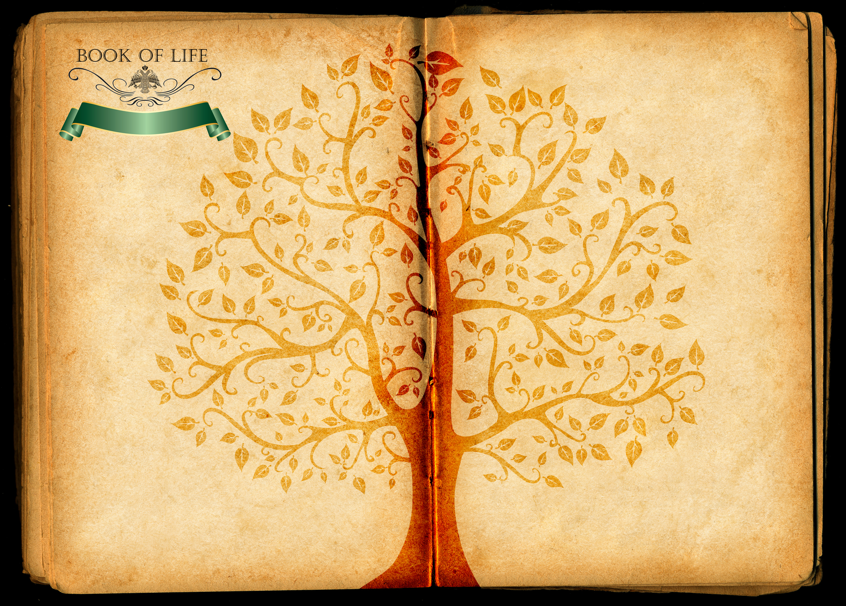 Tree of Life illustration